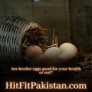 are broiler eggs good for your health or not
